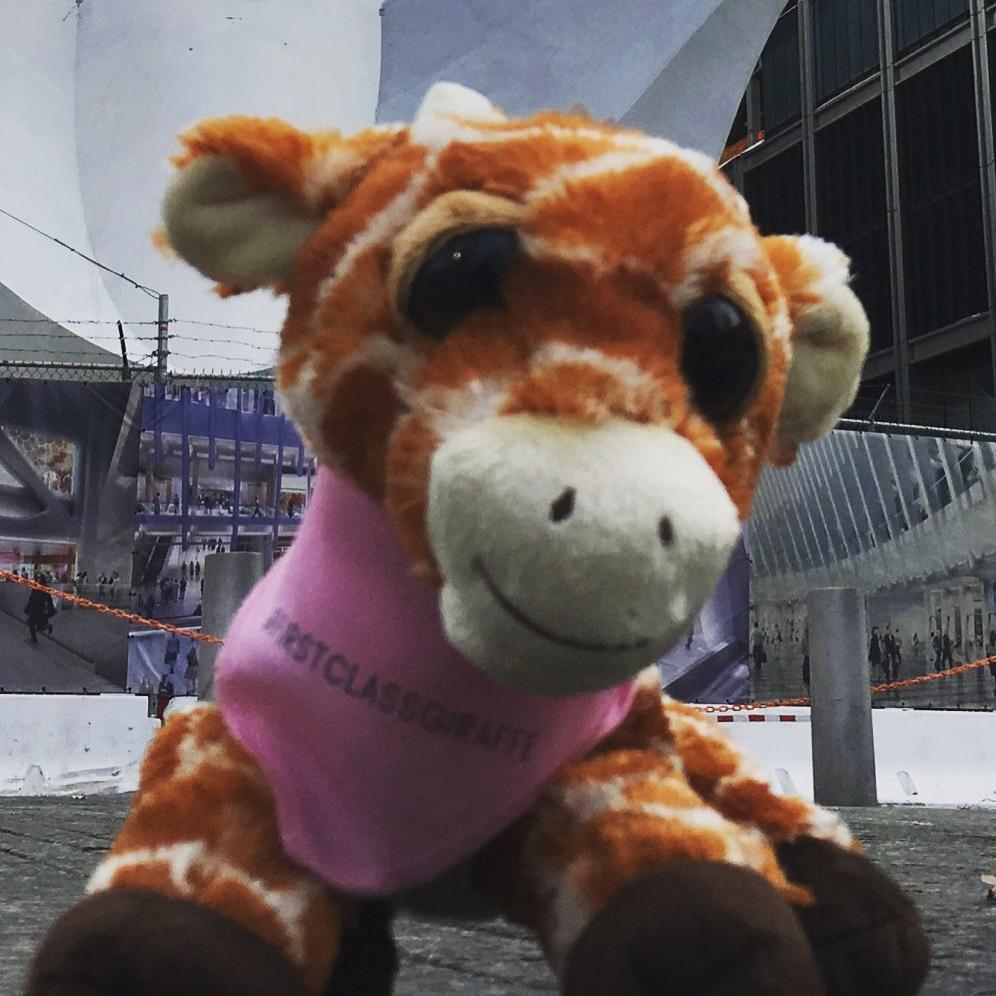 First Class Giraffe