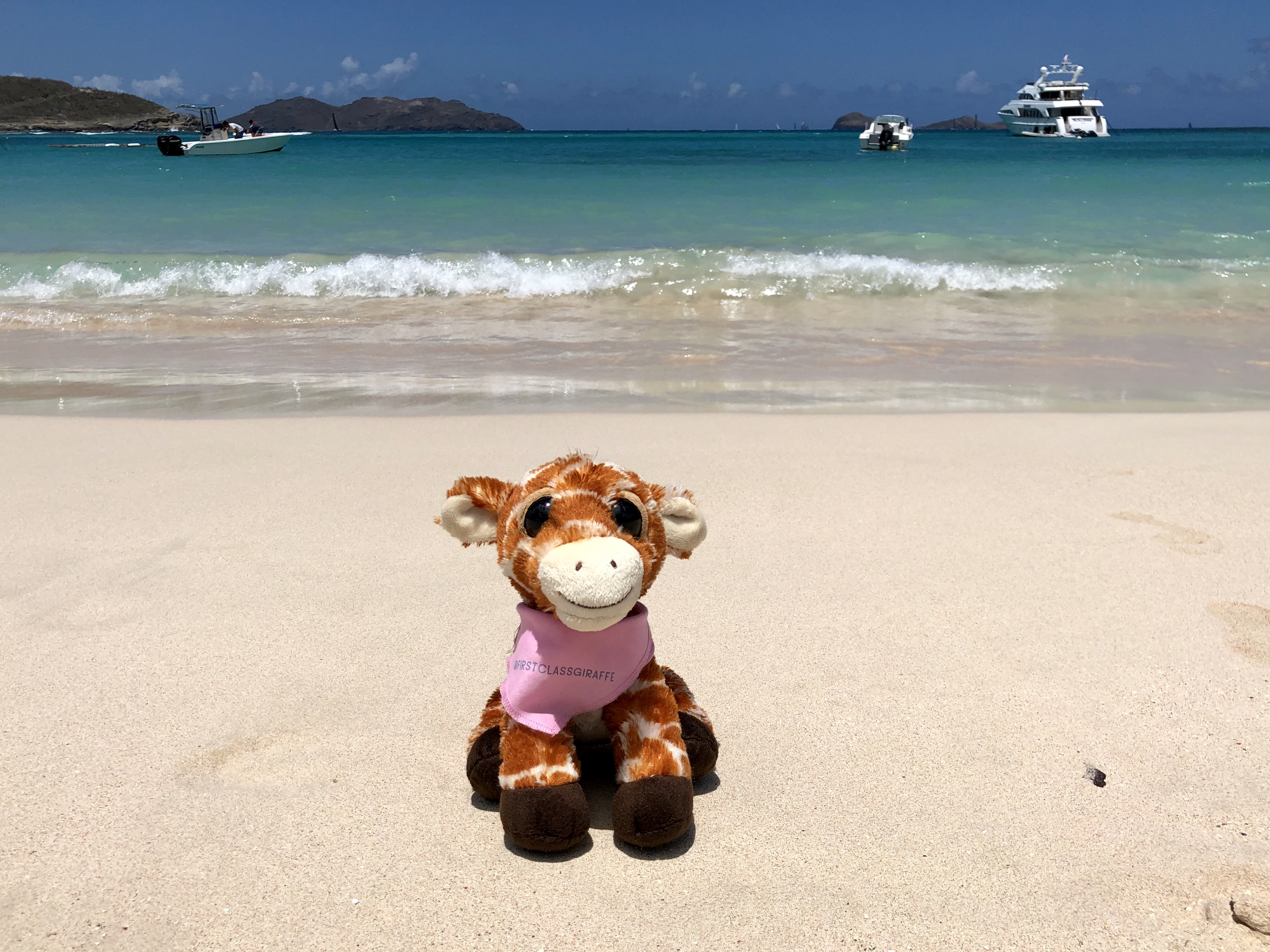 First Class Giraffe in Saint Barthélemy