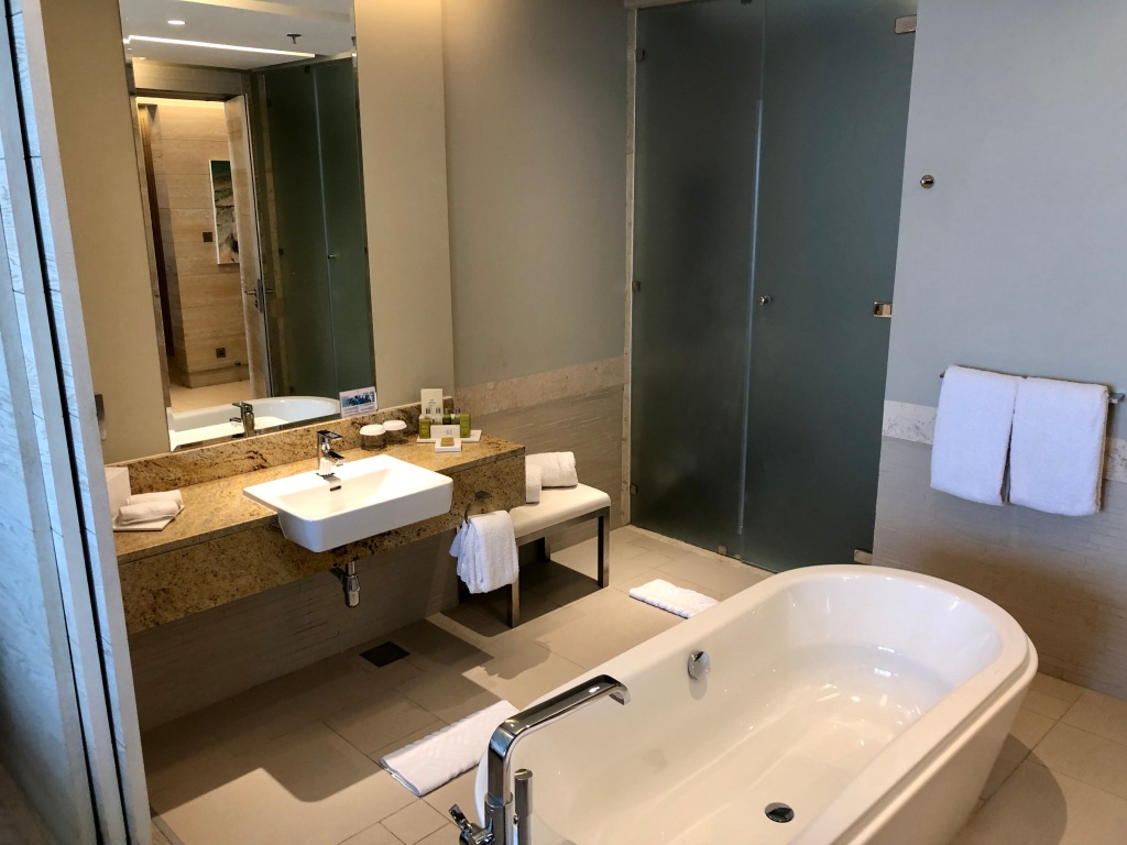 King Junior Suite bathroom