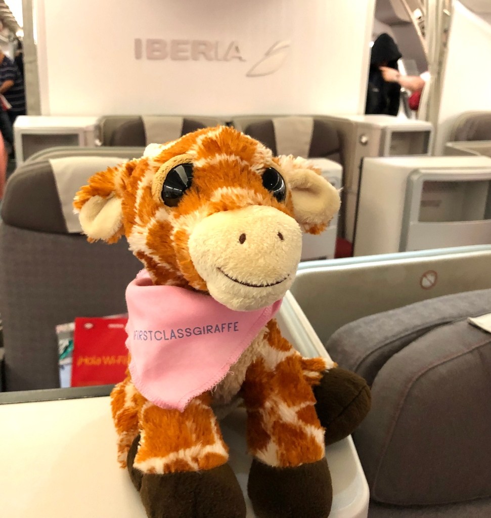First Class Giraffe checking out the Iberia Airbus 330-200 business class cabin