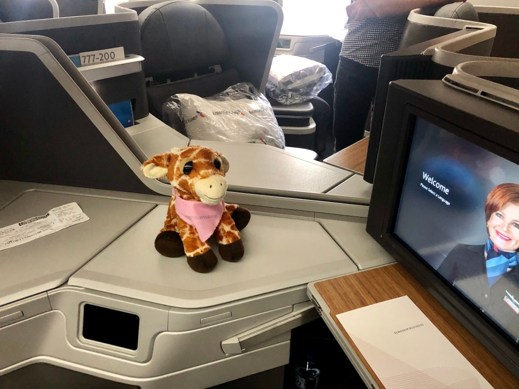 First Class Giraffe checking out the American Airlines 777-200 business class cabin