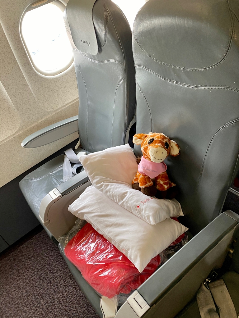 Aircraft: 319 (Airbus A319) Intra-European Business Class Seat