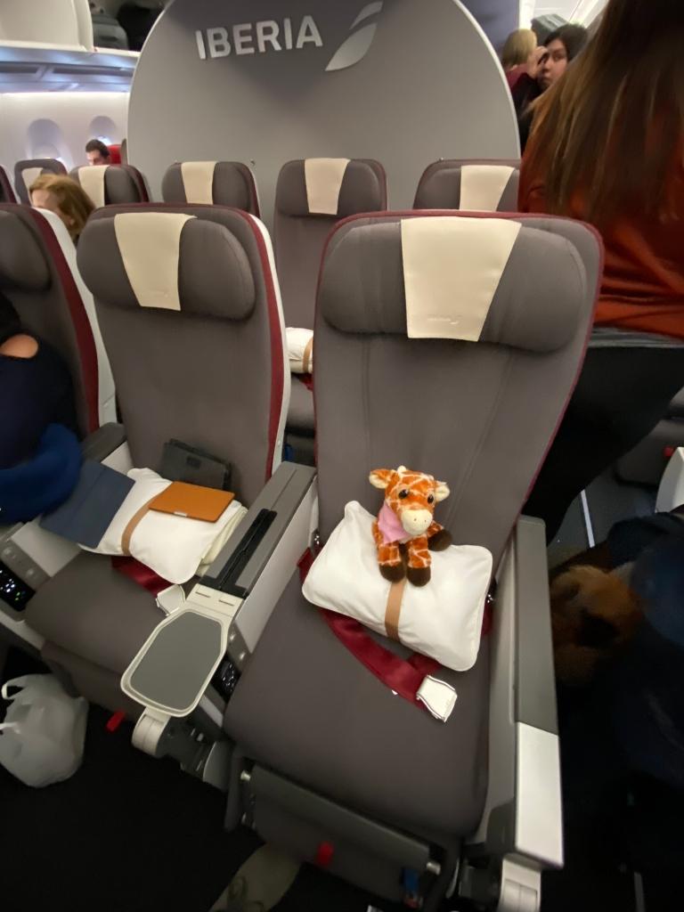 Iberia A350-900 Premium Economy cabin - First Class Giraffe in-seat