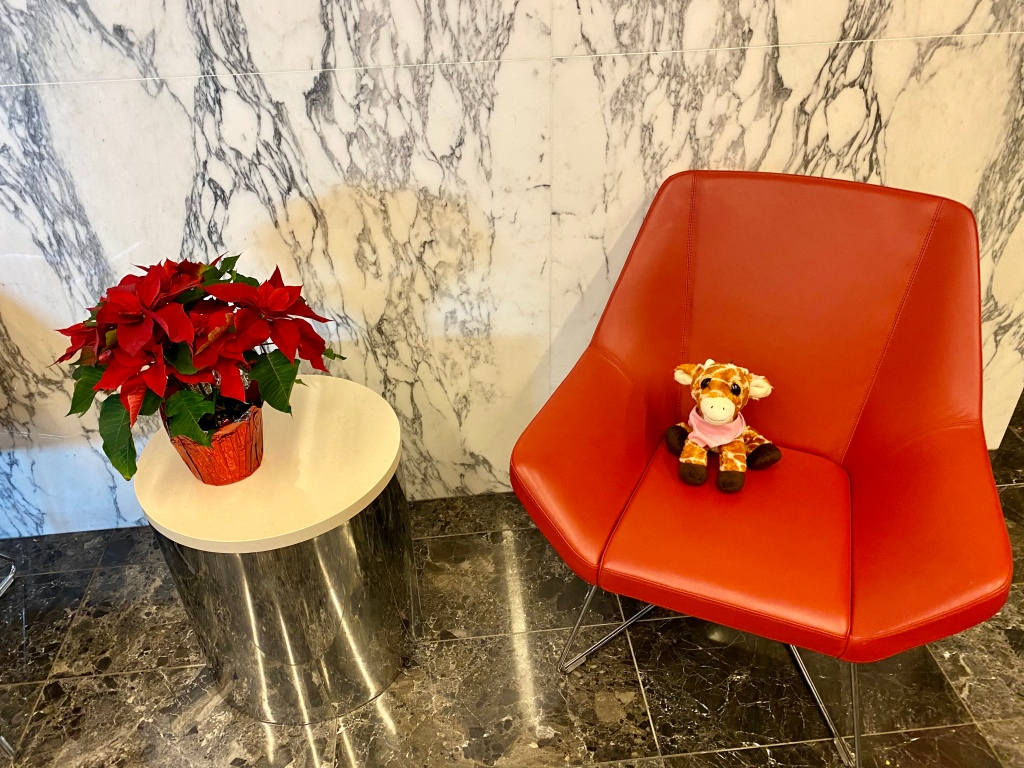 First Class Giraffe posing next to a lovely poinsettia in the LaGuardia Admirals Club