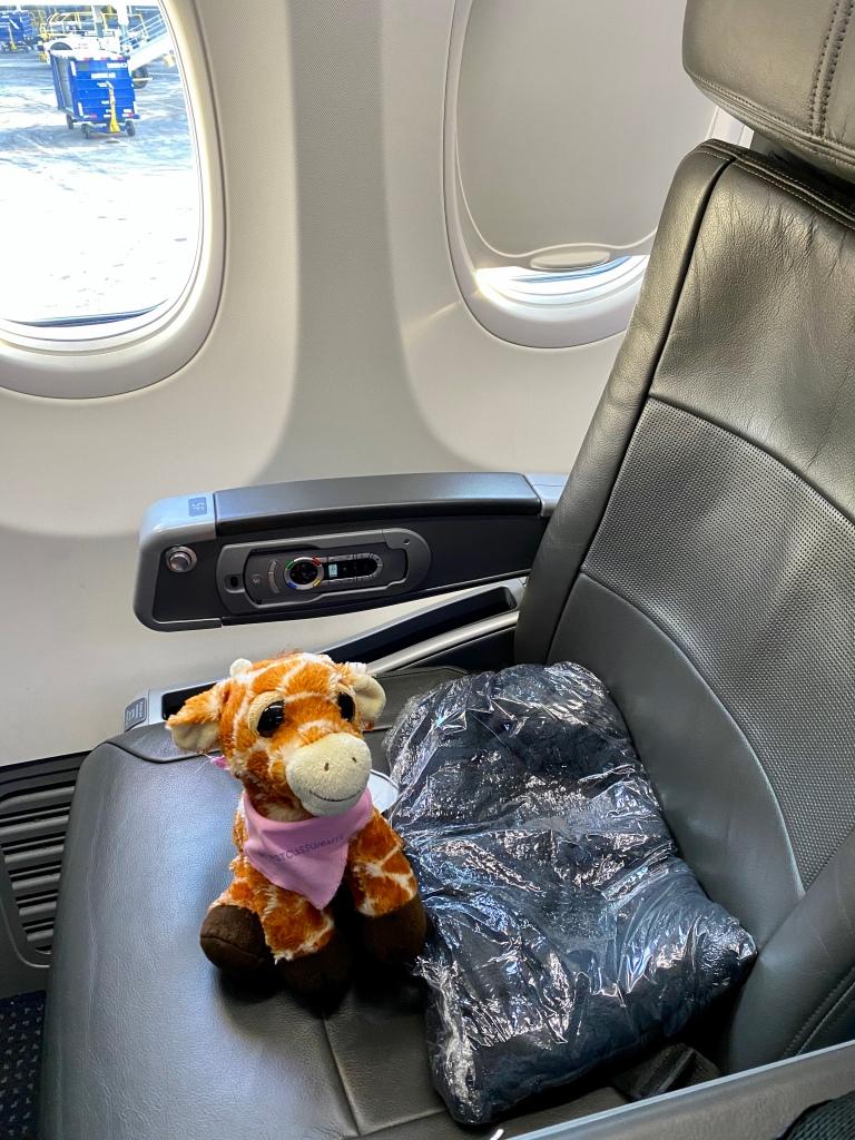 Aircraft: 738 (Boeing 7370-800) First Class Seat