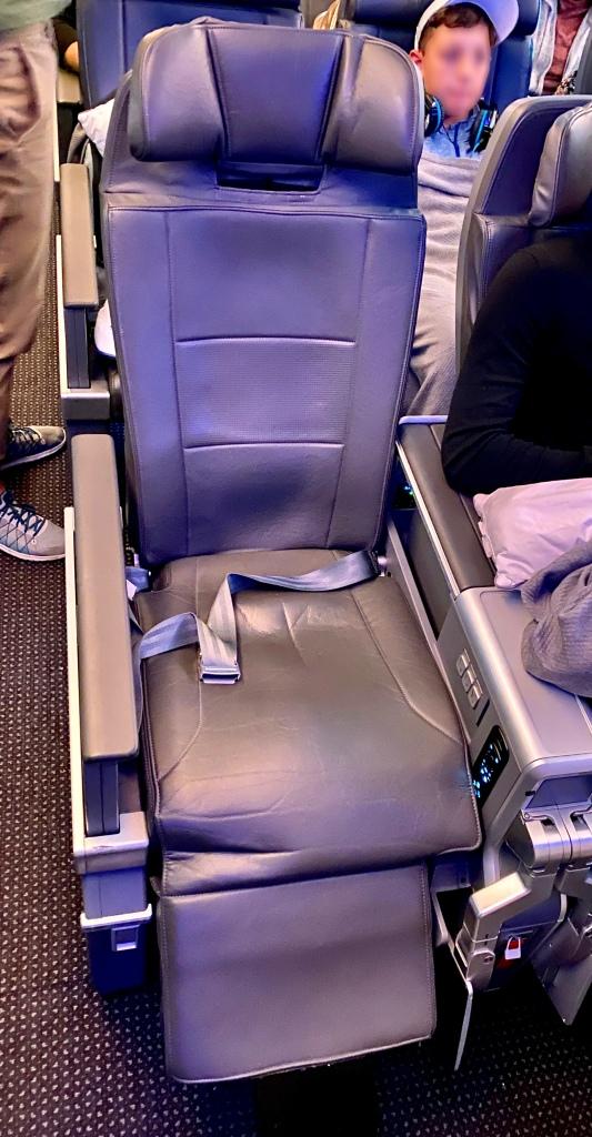 Premium economy seat / leg rest