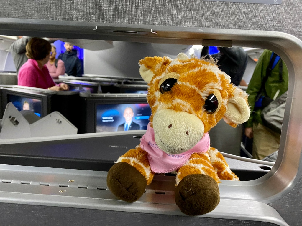First Class Giraffe had PDB envy