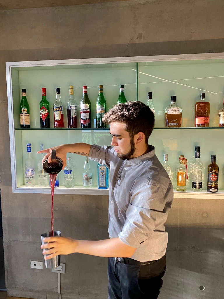 Bartender mixing up a Malbec vodka martini