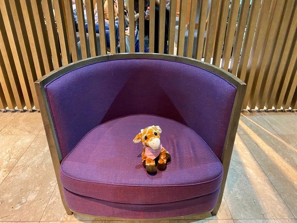 First Class Giraffe loves purple chairs!