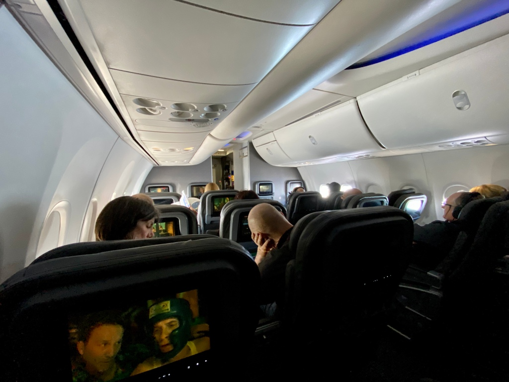 American 737-800 First Class Cabin